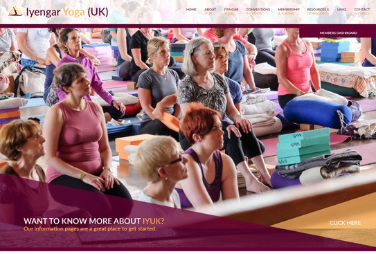 Iyengar Yoga (UK)